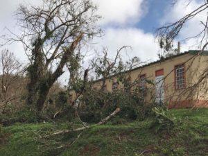Destruction at Betania Mennonite School near Aibonito